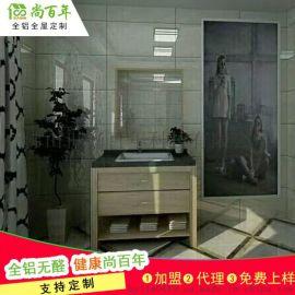 厂家尚百年全铝家居铝合金衣柜门型材防水防潮现代简约风格