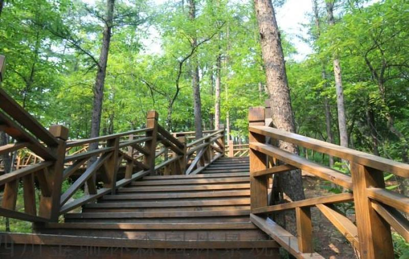 貴州瑞森公園木棧道定製加工廠家