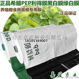 PEP利得膜香菇食用菌棚专用13S黑白膜绿白膜
