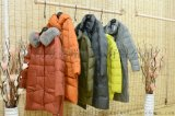 冬季服装进货多少钱【现货】威玛品牌羽绒服女厚