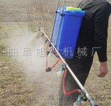 热销支架喷雾器多喷头背负式打药机