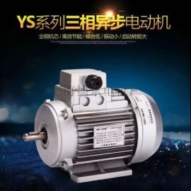 德东电机YS5622   0.12KW小功率电机