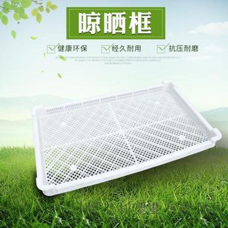 蔬菜海鲜冷冻盘晾晒盘速冻柜单冻器塑料长方形塑料框