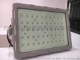 ZNFC81  款LED免维护三防灯