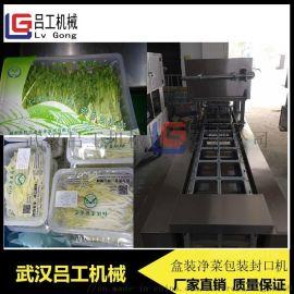 定制盒装净菜包装封盒机 即炒蔬菜盒装封口机
