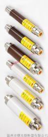 变压器保护用高压熔断器XRNT1-24KV/3.15-40A
