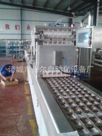 湘潭臭豆腐真空包装机-自动抽真空-贝尔420