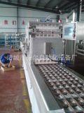 湘潭臭豆腐真空包裝機-自動抽真空-貝爾420