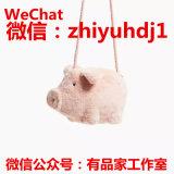 zara网红猪猪包代工厂原单货源一件代发货