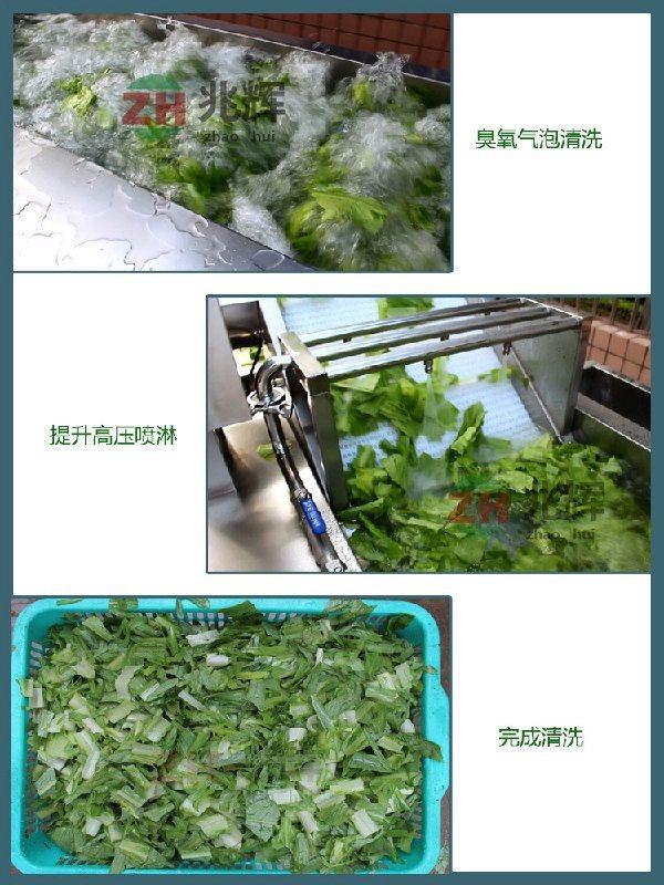 **蔬菜自动清洗机 蔬菜自动清洗机 打造中国**蔬菜自动清洗机