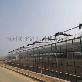 智慧玻璃溫室 溫室承建 生態溫室