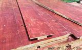房建现浇建筑模板 木模板 周转次数多 价格优惠