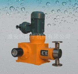 柱塞式计量泵(5)