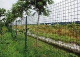 圈地圍網 種植防護網 圈山護欄網
