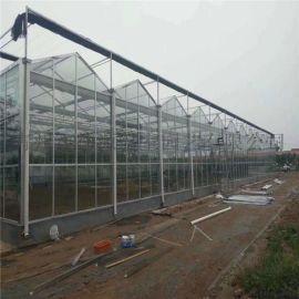 玻璃智能温室大棚--德源温室