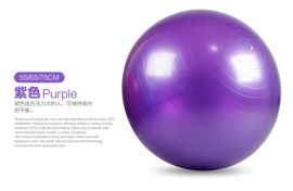 瑜伽球加厚防爆**瑜珈球孕妇瘦身分娩减肥球65cm健身球无味