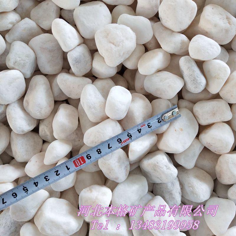 供应白石子 雪花白鹅卵石 山水园林白石子