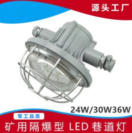 购物狂欢防爆灯固态免维护节能灯
