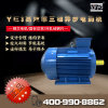 立式YE3-90L-2-2.2kW電動機400V