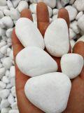 安徽白色砾石   永顺抛光鹅卵石供应商
