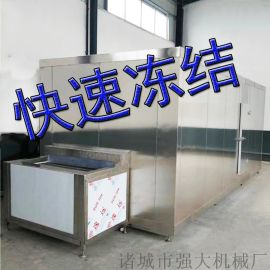 肉制品氟利昂速冻机 低温液氮隧道速冻机