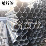 上海国强友花热镀钢现货供应