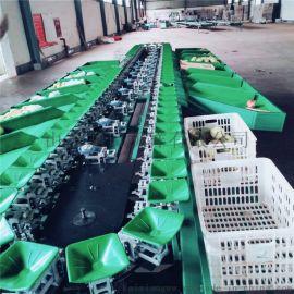 全自动石榴分选机,分选石榴大小的机器