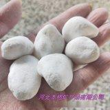 河北廠家 雪花白石米 鵝卵石白色 枯山水造景白石子