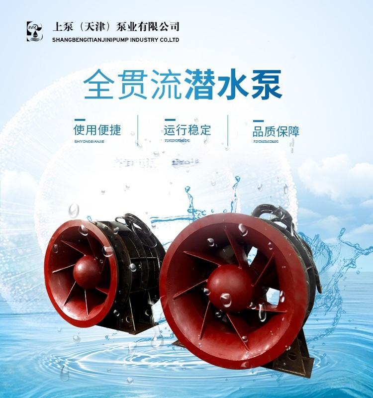 隔墩自耦推力安装QGWZ全贯流潜水泵