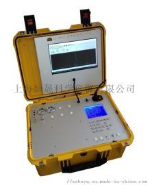 华港 燃气   天然气分析仪 燃气热值检测
