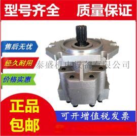 液压齿轮泵G5-25-20-10-10-1E13F-20R