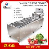 蔬菜水果气泡清洗机洗菜机TS-X300A