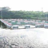 大型深海養殖網箱 大型深海網箱養殖設備 養殖網箱