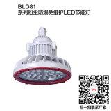 led防爆马路泛光灯150W护栏式灯杆防爆灯