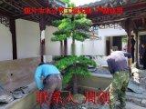 苏州私家园林工程 私家庭院绿化种植 苏州绿化设计