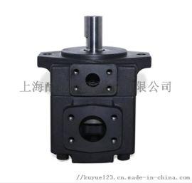 美国丹尼逊T6C-008-1R00-B1/A1叶片泵