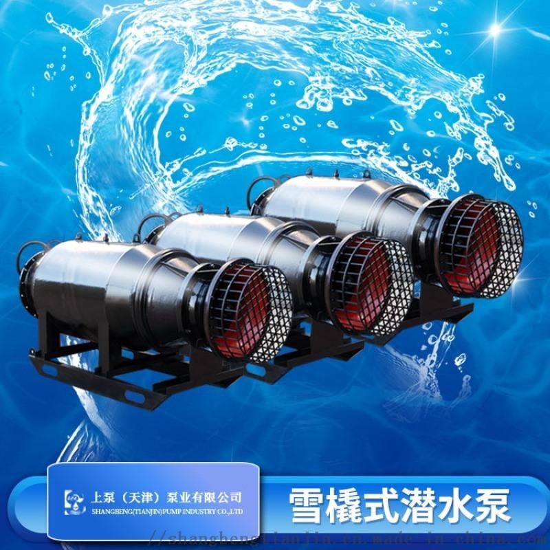 北京雨水排澇600QZ雪橇式潛水軸流泵