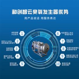 水厂消毒大型臭氧发生器原理