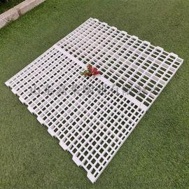 结实耐用塑料漏粪板养殖漏粪板鸡鸭鹅塑料漏粪板
