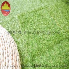 供应足球草皮 足球场草坪网