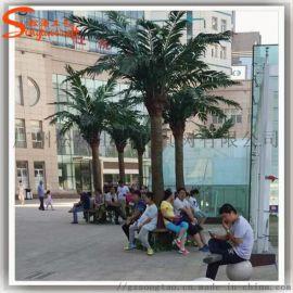 广州仿真树厂家松涛新款椰子树,室内游泳馆装饰大王椰