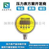 车胎检测压力表方案,深圳鼎盛合提供方案开发