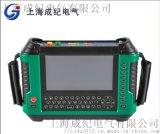 上海成纪轻便三相多功能用电检查仪