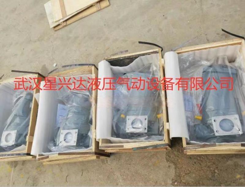 变量柱塞泵A7V20MA1RPG00