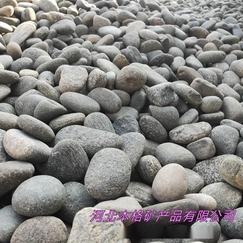 本格厂家直销 鹅卵石 鹅卵石切片 内外墙装饰铺路石