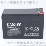 12V7AH卷闸门消防监控儿童车音响喇叭喷雾器电池