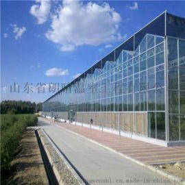 厂家直销玻璃智能温室大棚 大量批发供应