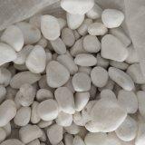 江苏白色鹅卵石   永顺白色雨花石多少钱
