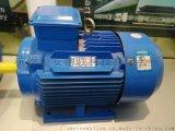 110KW-8三相异步感应式大扭力电机