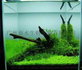 深圳南山区亚克力鱼缸造景、在哪里卖